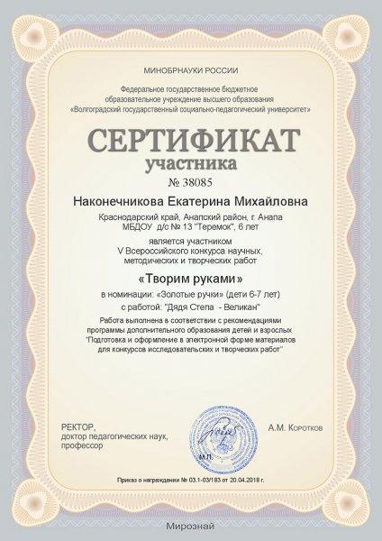 dostvosp03032019-(5)
